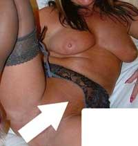 sexig puma söker unga män